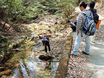 鶏冠山ハイキング