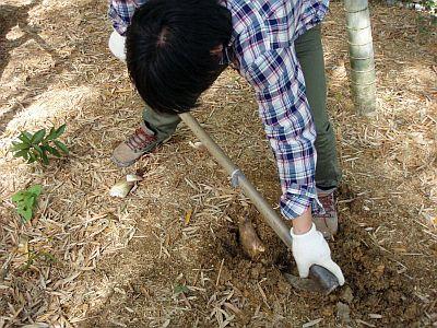 筍掘り&バーベキュー