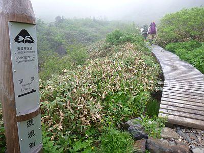 トンビ岩コース